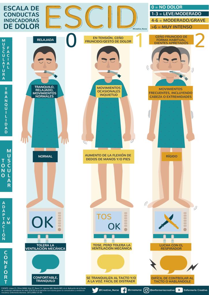 Escala de conductas indicadoras de dolor